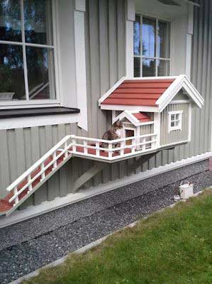 HDI-DIY-Pet-Projects-019