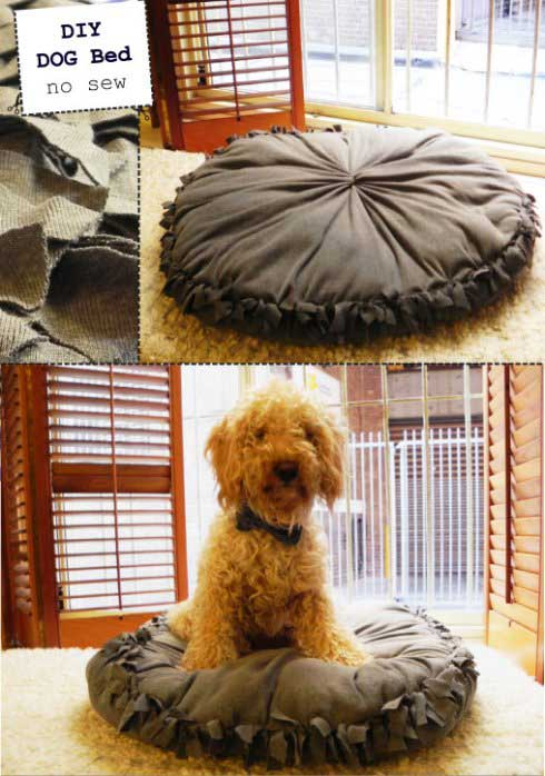 HDI-DIY-Pet-Projects-021