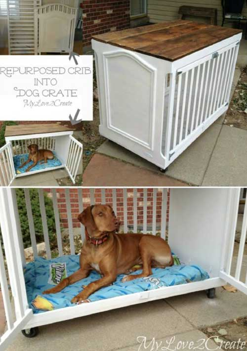 HDI-DIY-Pet-Projects-027