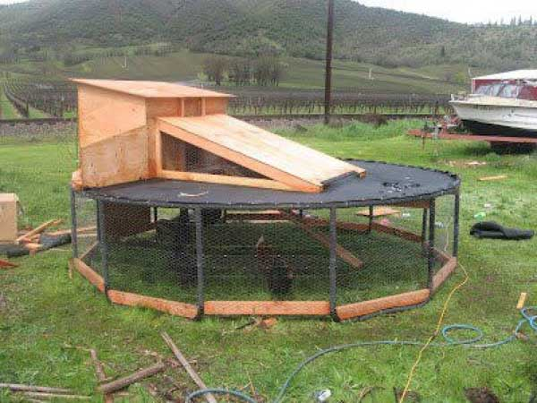 diy-chicken-coop-projects-HDI-11