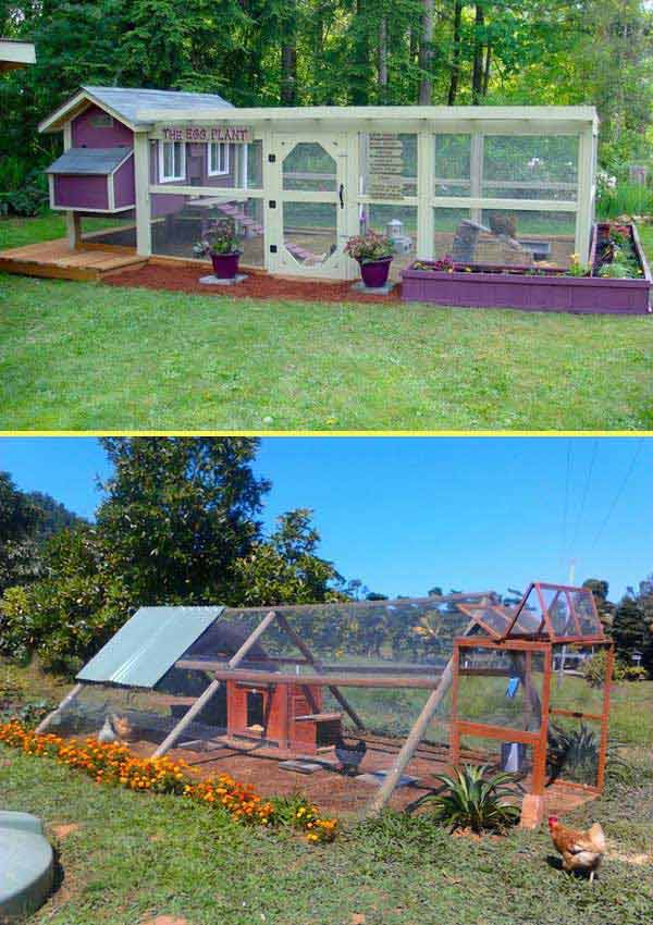 diy-chicken-coop-projects-HDI-16