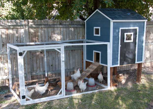 diy-chicken-coop-projects-HDI-2