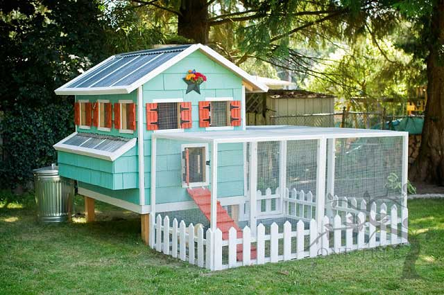 diy-chicken-coop-projects-HDI-8
