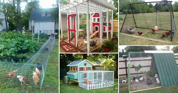 22 Low Budget Diy Backyard Chicken Coop Plans