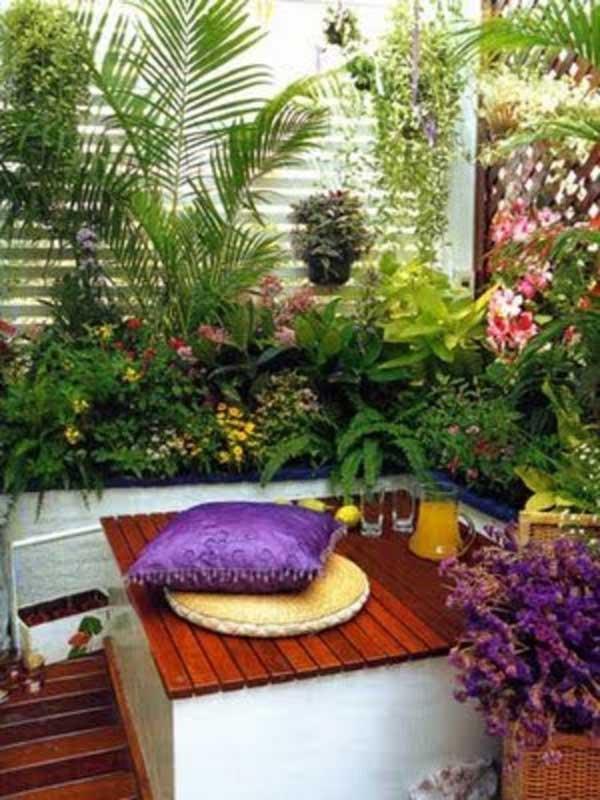 Tiny Courtyard 24