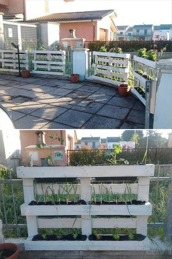 pallet-projects-can-be-found-every-place-34
