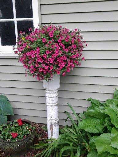 front door flower pots  liven   home  homedesigninspired