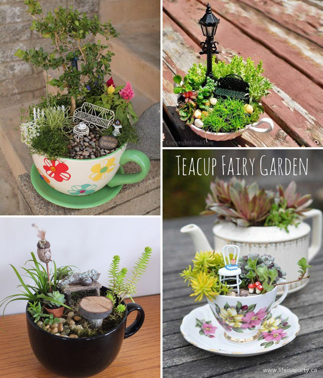 convert tea cups into crazy mini fairy garden