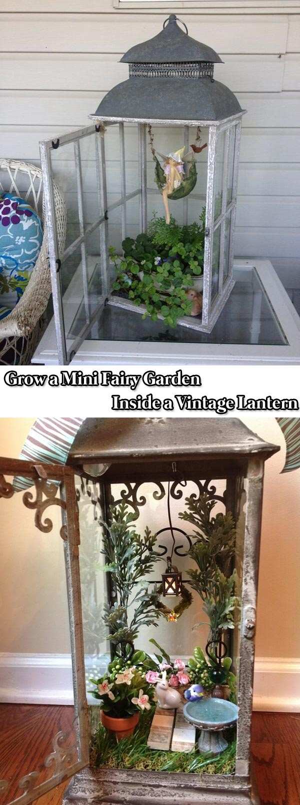 Grow a Mini Fairy Garden Inside a Vintage Lantern