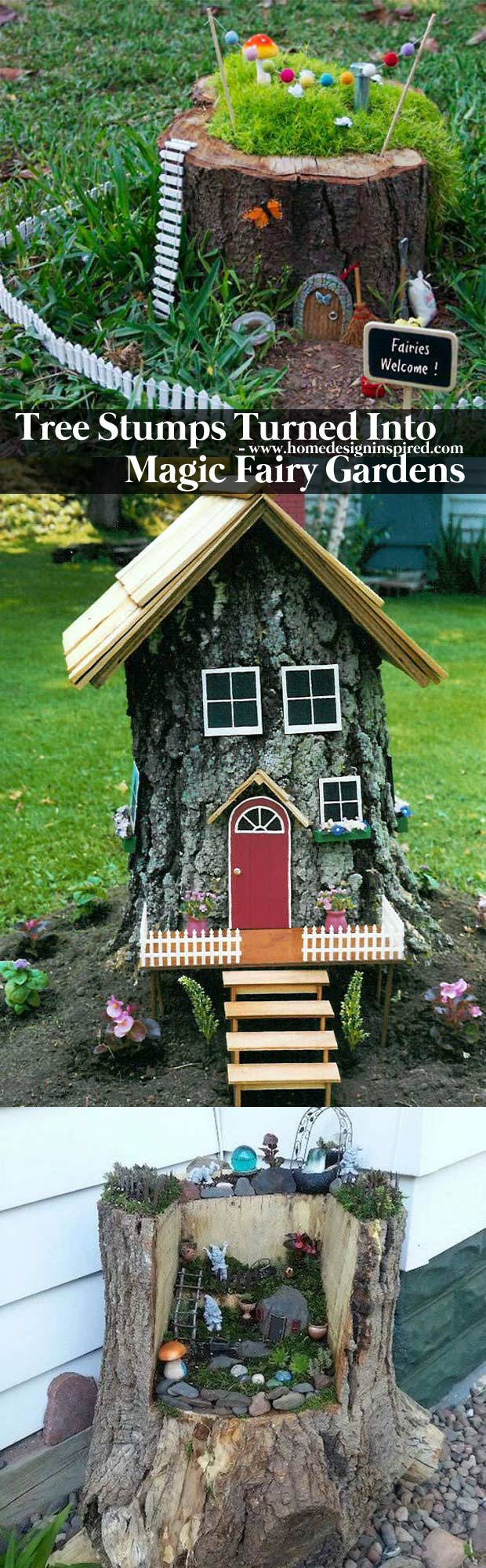 Tree stumps turned into magic fairy houses
