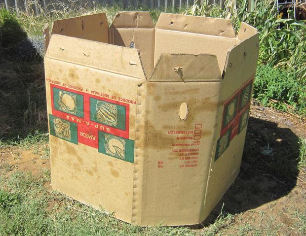Cardboard Compost Bins