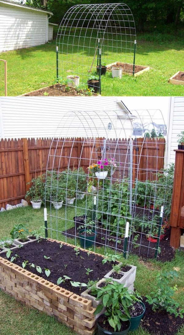 Trellis & Raised Garden Box Combo