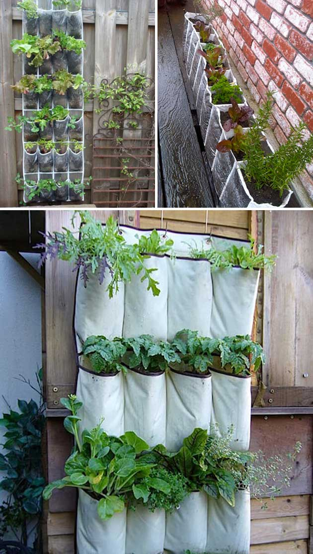 Repurpose a shoe organiser as a planter
