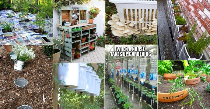 Nice 23 Insanely Clever Gardening Ideas On Low Budget