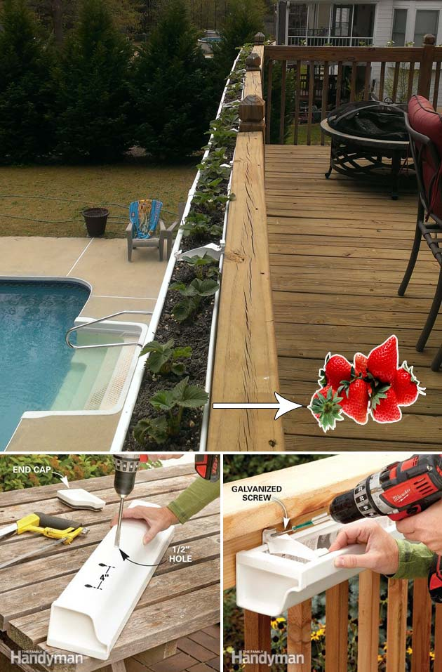 deck railing-mounted strawberry garden