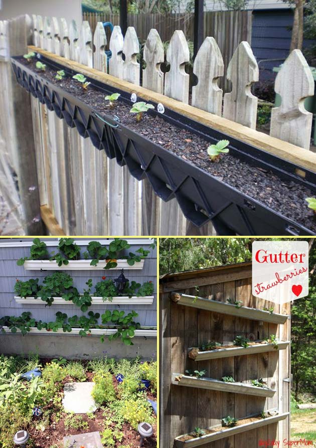 Diy Saving Space Ideas For Growing Strawberries