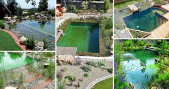 Natural Swimming Pool Ideas [How to, Tips and Pictures]