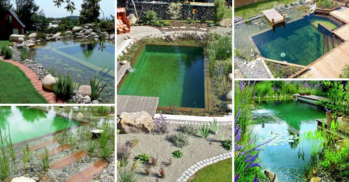 Natural Swimming Pool Ideas How To Tips And Pictures
