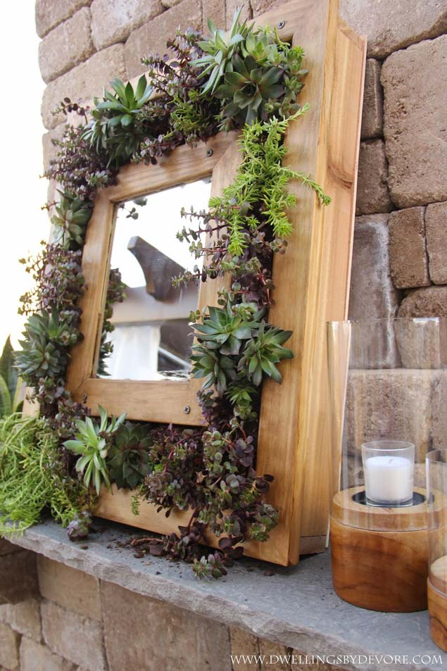 Stunning Succulent Mirror Frame